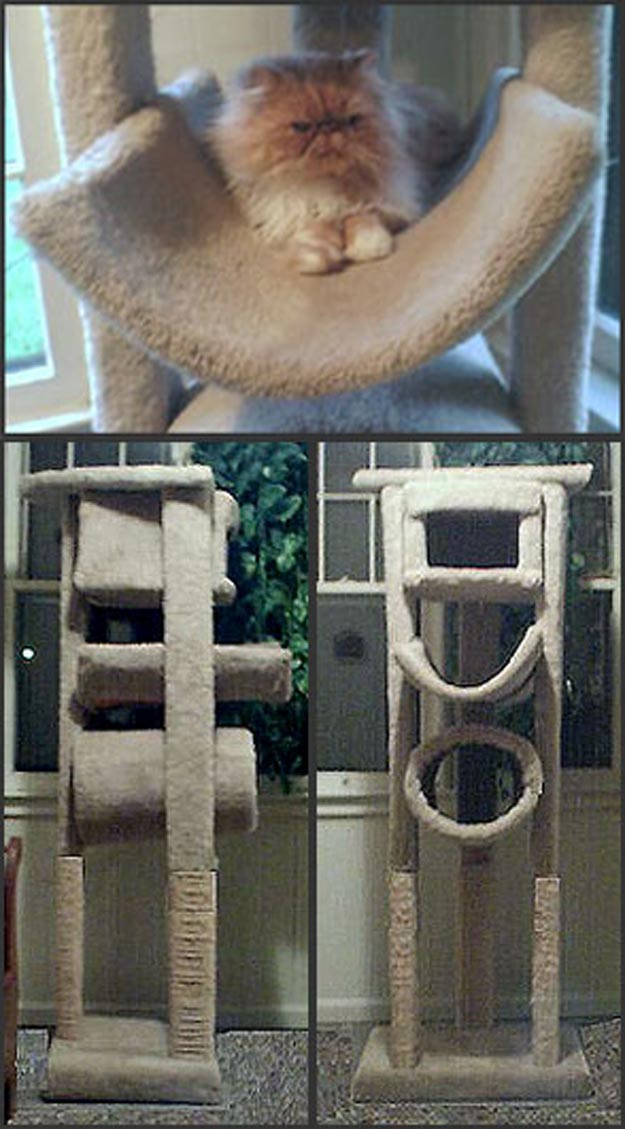 DIY Ideas for Your Cat - Building a Cat Tree - Cool and Easy Homemade Stuff To Make For Cats and Kittens - Cardboard Furniture, DIY Cat Scratching Post and Lounging Tree - Litter Box, Pet Bes, Craft Projects, Toys and Hacks for Creavite Things to Make - Food and Treat Recipes http://teencrafts.com/diy-ideas-cat
