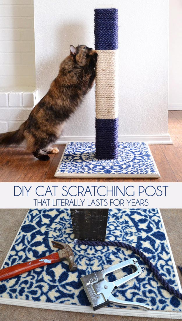 DIY Ideas for Your Cat - DIY Cat Scratching Post - Cool and Easy Homemade Stuff To Make For Cats and Kittens - Cardboard Furniture, DIY Cat Scratching Post and Lounging Tree - Litter Box, Pet Bes, Craft Projects, Toys and Hacks for Creavite Things to Make - Food and Treat Recipes http://teencrafts.com/diy-ideas-cat