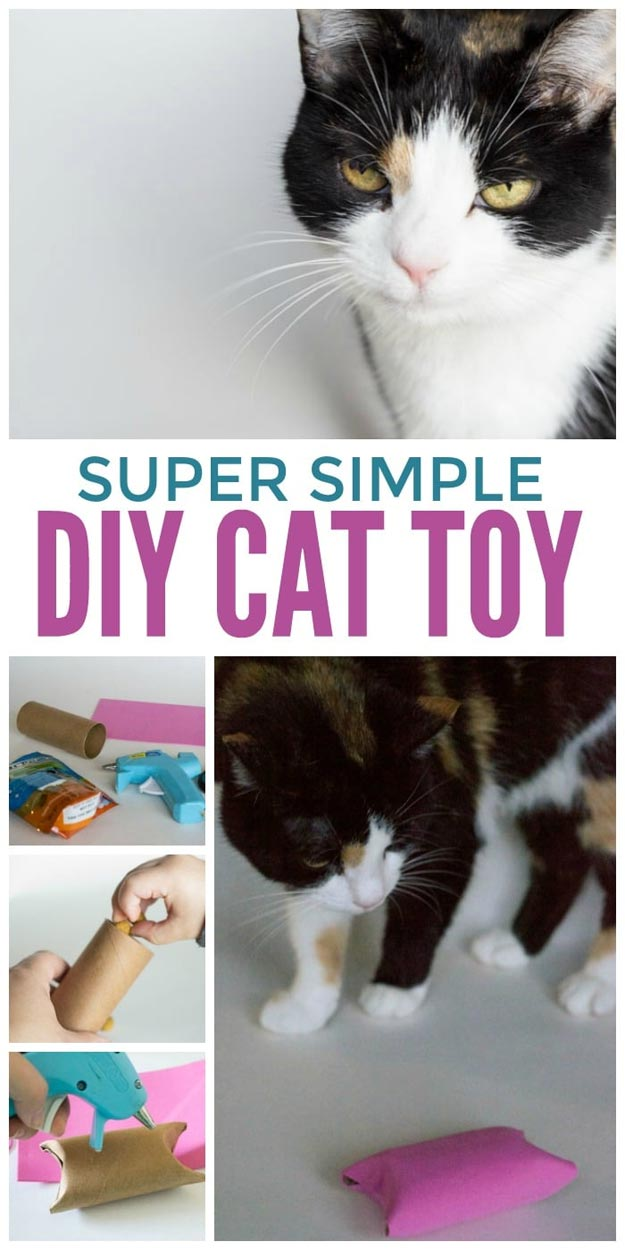 DIY Ideas for Your Cat - DIY Cat Toy Pampering Your Kitty - Cool and Easy Homemade Stuff To Make For Cats and Kittens - Cardboard Furniture, DIY Cat Scratching Post and Lounging Tree - Litter Box, Pet Bes, Craft Projects, Toys and Hacks for Creavite Things to Make - Food and Treat Recipes http://teencrafts.com/diy-ideas-cat