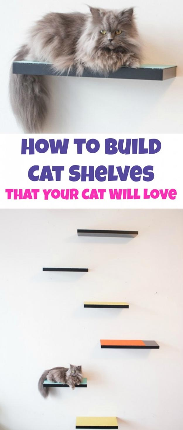 DIY Ideas for Your Cat - How to Build Cat Shelves that Your Cat will Love - Cool and Easy Homemade Stuff To Make For Cats and Kittens - Cardboard Furniture, DIY Cat Scratching Post and Lounging Tree - Litter Box, Pet Bes, Craft Projects, Toys and Hacks for Creavite Things to Make - Food and Treat Recipes http://teencrafts.com/diy-ideas-cat