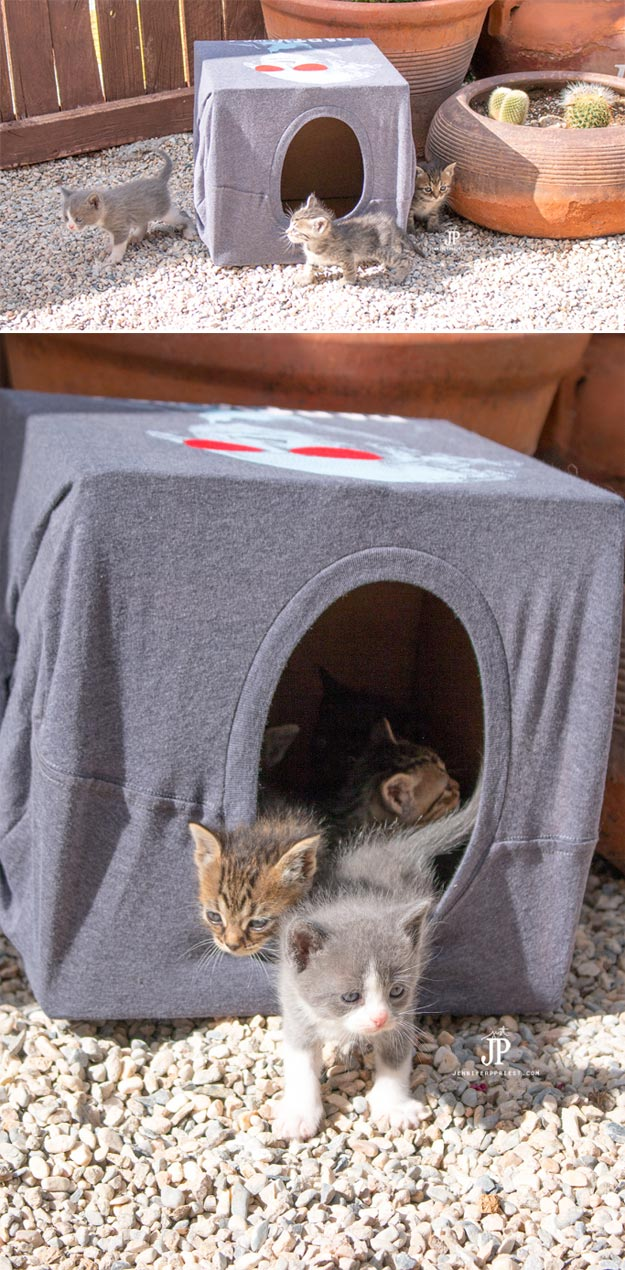 DIY Ideas for Your Cat - How to make a Cheap DIY Cat House - Cool and Easy Homemade Stuff To Make For Cats and Kittens - Cardboard Furniture, DIY Cat Scratching Post and Lounging Tree - Litter Box, Pet Bes, Craft Projects, Toys and Hacks for Creavite Things to Make - Food and Treat Recipes http://teencrafts.com/diy-ideas-cat