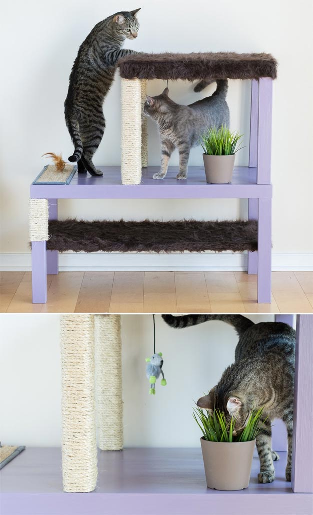 DIY Ideas for Your Cat - Make a Cat Condo Remodel - Cool and Easy Homemade Stuff To Make For Cats and Kittens - Cardboard Furniture, DIY Cat Scratching Post and Lounging Tree - Litter Box, Pet Bes, Craft Projects, Toys and Hacks for Creavite Things to Make - Food and Treat Recipes http://teencrafts.com/diy-ideas-cat