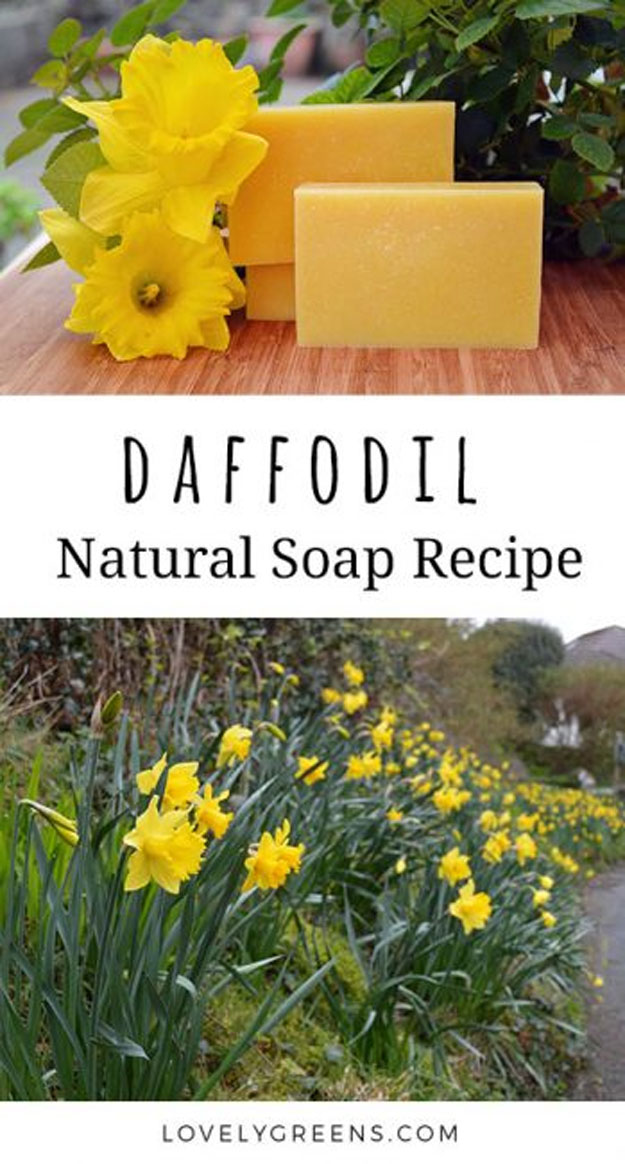 Lush Copycat Recipes - Daffodil Soap Recipe using Real Flowers - DIY Lush Inspired Copycats and Dupes - How to Make Do It Yourself Lush Products like Homemade Bath Bombs, Face Masks, Lip Scrub, Bubble Bars, Dry Shampoo and Hair Conditioner, Shower Jelly, Lotion, Soap, Toner and Moisturizer. Tutorials Inspired by Ocean Salt, Buffy, Dark Angels, Rub Rub Rub, Big, Dream Cream and More. Teens and Teenager Crafts http://teencrafts.com/diy-lush-recipes-copycat