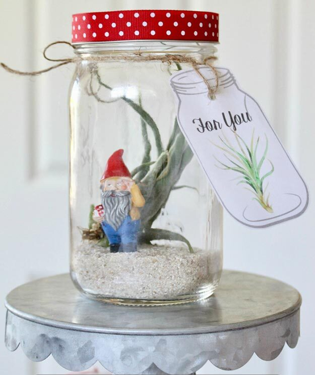 Gifts in A Jar Ideas, Recipes - DIY Air Plant in A Jar Gift - Inexpensive Gifts You Can Make For Friends and Neighbors - Gift Jars for Christmas, Teachers - Cute Gift Ideas in Mason Jars - What to Put in Jar as A Gift - Cheap and Easy Gifts