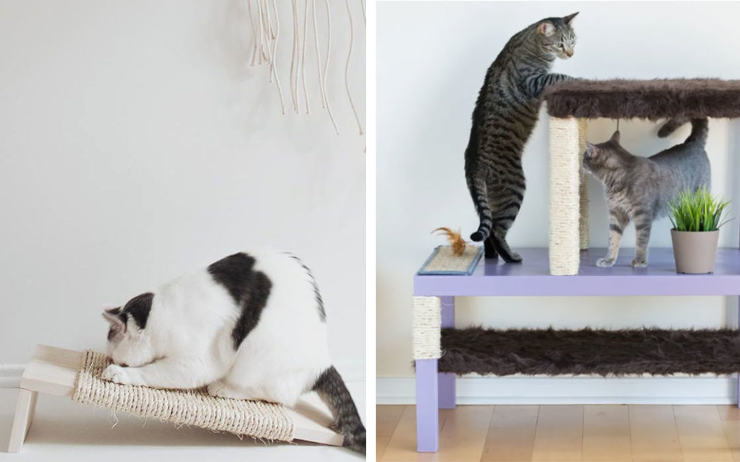 30 Cute Diy Ideas To Make For Your Cat Teen Crafts